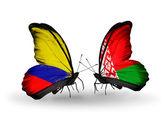 Motýli s příznaky columbia a Běloruska na křídlech