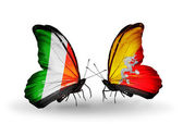 Motýli s Irskem a Bhútán vlajky na křídlech