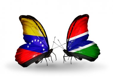 Butterflies with Venezuela and Gambia flags on wings