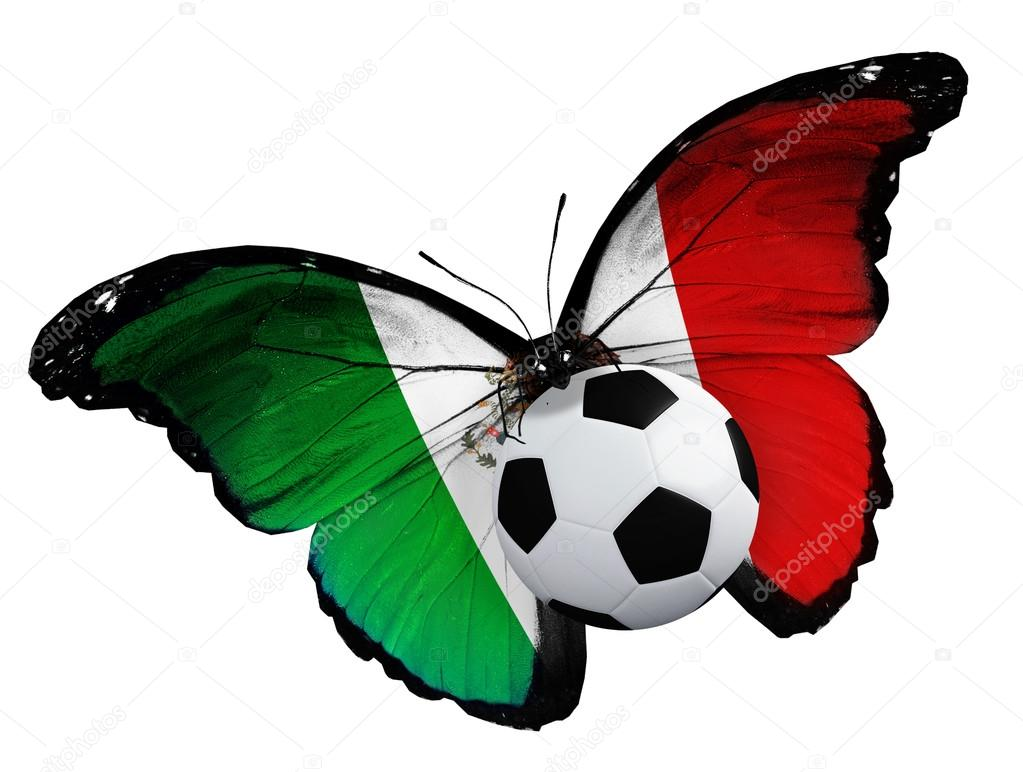 butterfly with mexican flag and ball u2014 stock photo sun tiger