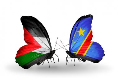 Butterflies with Palestine and Kongo flags