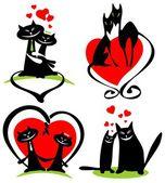 láska kočky