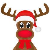 Photo Christmas reindeer
