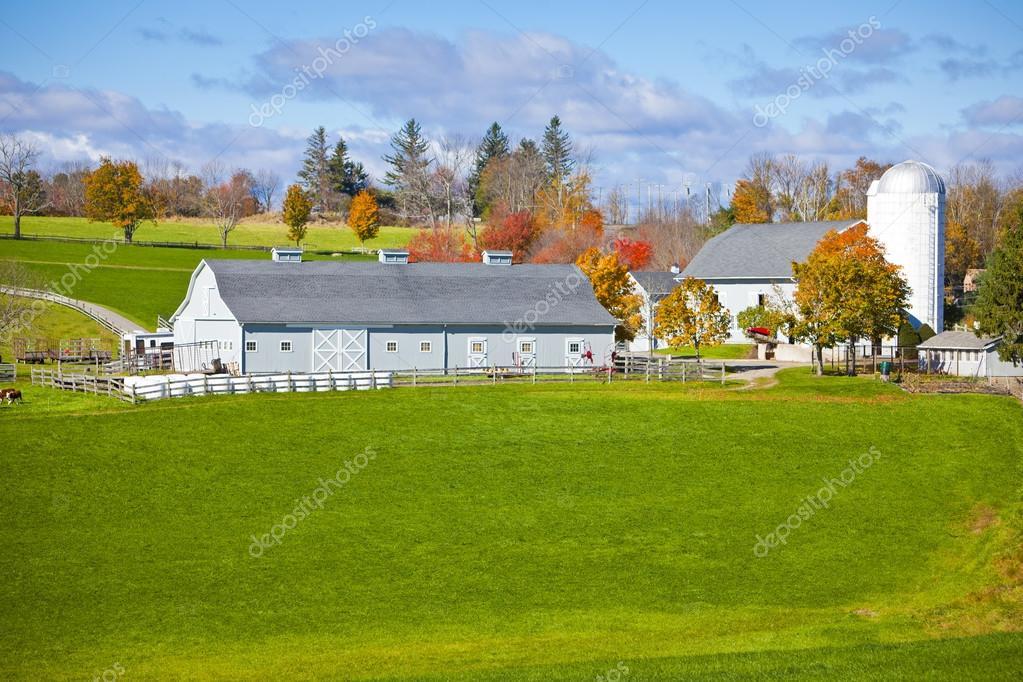 Generic Dairy farm