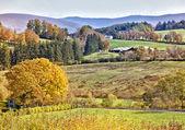 Fényképek őszi táj