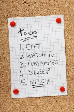 A To Do List for Students