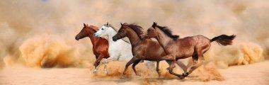 Herd gallops in the sand storm stock vector