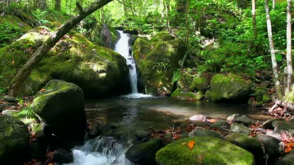 tropické vodopád