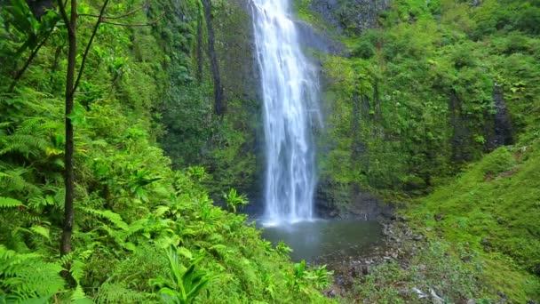 tropické džungle vodopád v hawaii