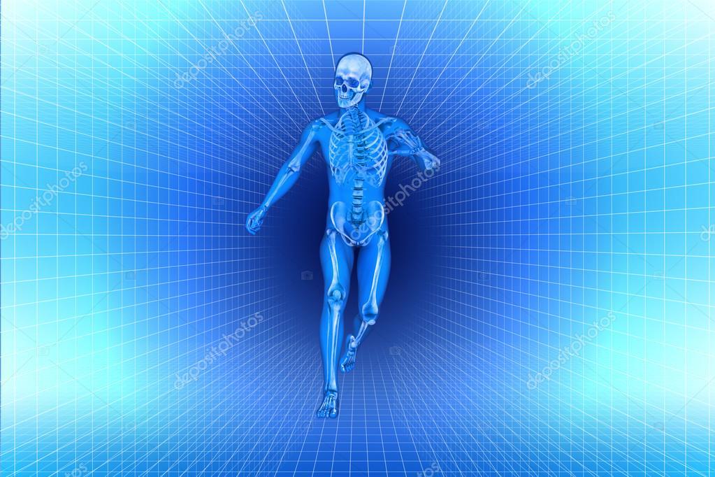 Ejecute a hombres anatomía de rayos x — Foto de stock © vitstudio ...