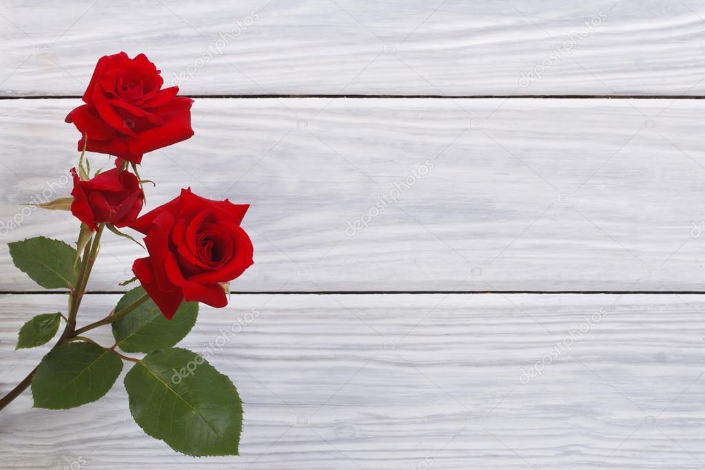 rosas rojas hermosas flores enmarcan la superficie de madera — Fotos ...