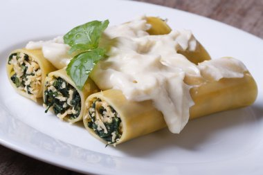 cannelloni with spinach and cheese and bechamel sauce closeup