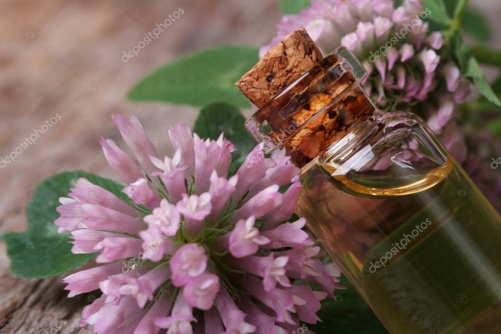clover extract in a bottle nd flowers macro horizontal