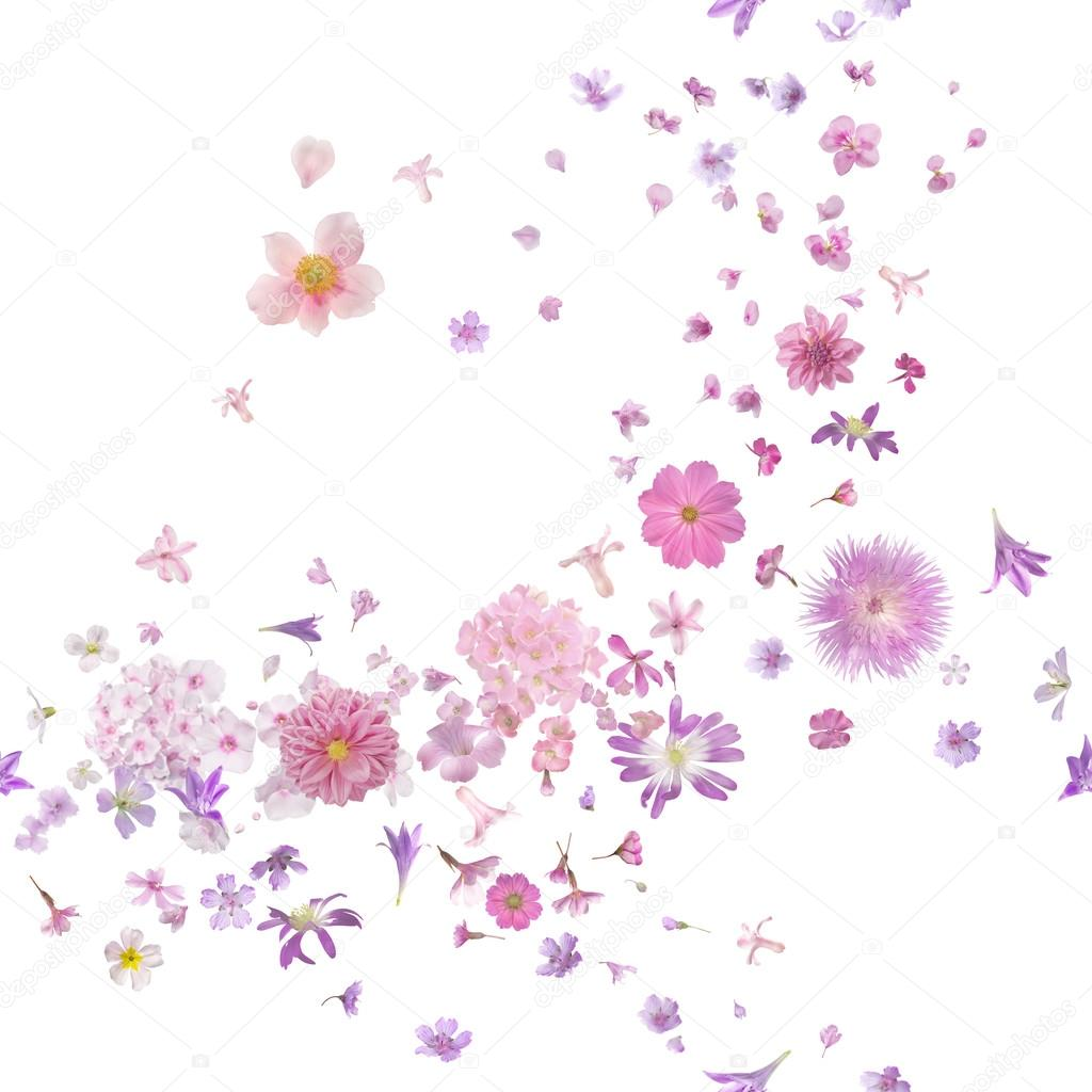 Pink Blossom Flower Buds Breeze
