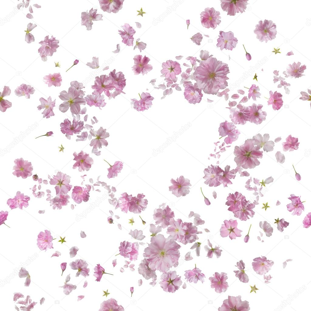 Repeatable Ornamental Sakura Blossom Breeze