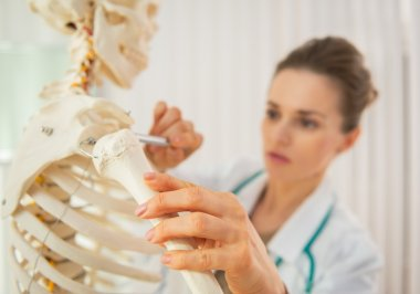 Doctor using skeleton model