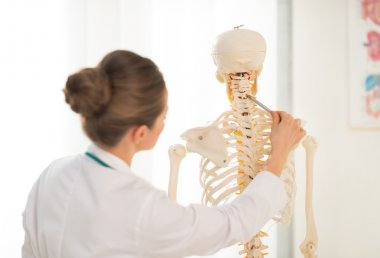 Doctor teaching anatomy using skeleton