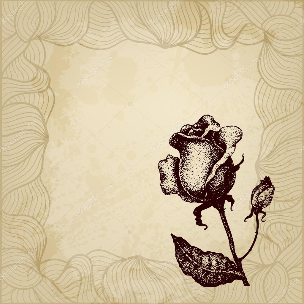 Vintage vector rose background