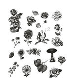 Fotografie Vector set of hand drawn vintage flowers for Your design