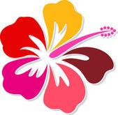 Hibiszkusz logó
