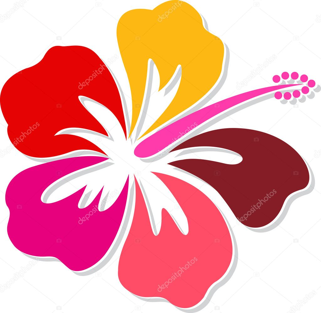 Hibiscus Logo Stock Vector Magagraphics 13176387