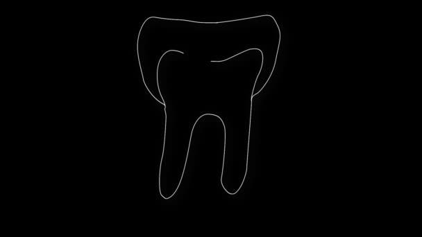 Animation menschlicher Zähne
