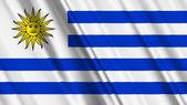 Photo Uruguay Flag