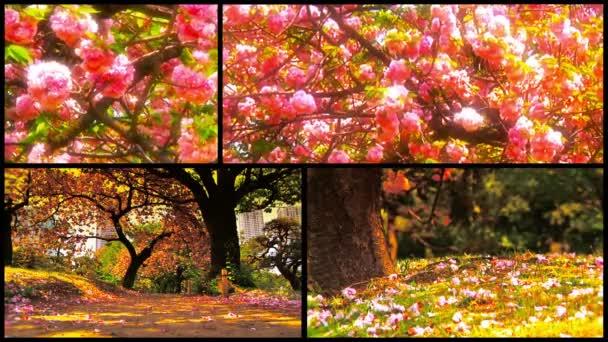 Természet tavaszán minden oldalról