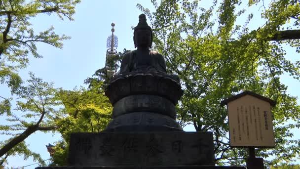 socha Buddhy