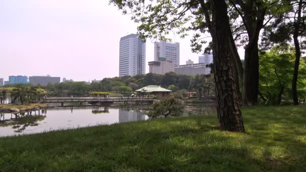 japonská zahrada v tokyu