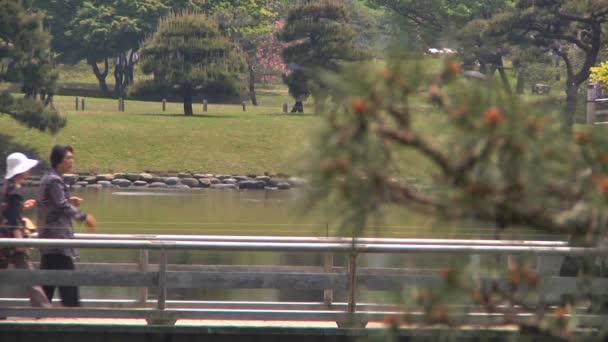 chůze v zahradní japonská zahrada
