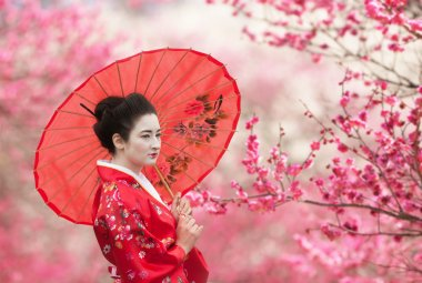 Geisha with umbrella on a flowering tree branches background