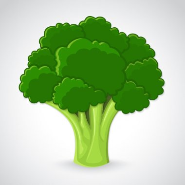 Artistic vector broccoli