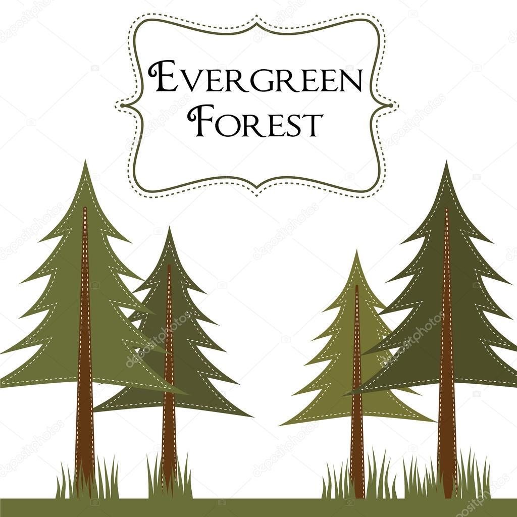 plantilla de bosque de pinos — Archivo Imágenes Vectoriales © sjhuls ...