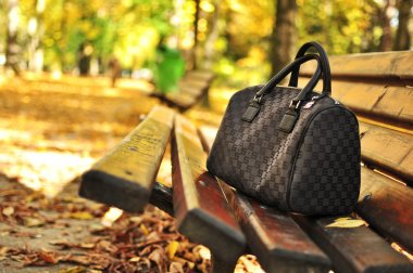 Woman purse on bench in park against autumn background