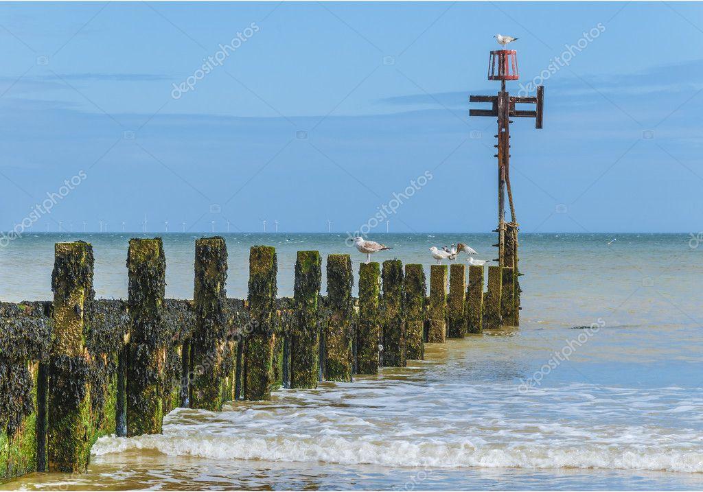bord de mer avec des pis en bois entrant dans la mer photographie dustbinman 27452909. Black Bedroom Furniture Sets. Home Design Ideas
