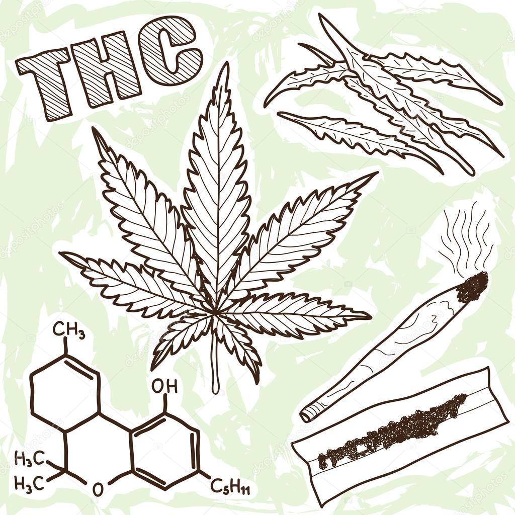 Рисунок ручкой марихуаны выглядит конопля