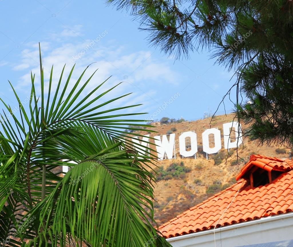 Hollywood Sign Behind Palm Tree Los Angeles Stock Photo