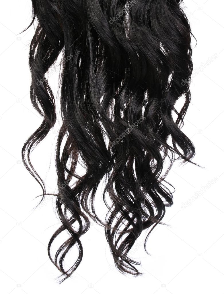 Curly Black Hair isolated in white. Brunette