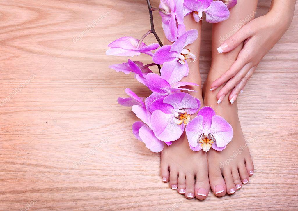 soins des pieds p dicure avec orchid e rose fleurs sur bois photographie guzel 41595049. Black Bedroom Furniture Sets. Home Design Ideas