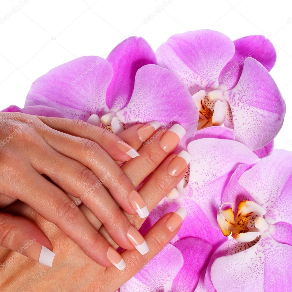 French Manicure. Beautiful Female Hands with pink orchid flowers