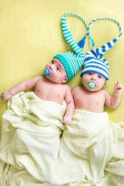 Twins brothers babies boys