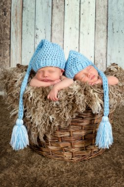 Baby basket with twins