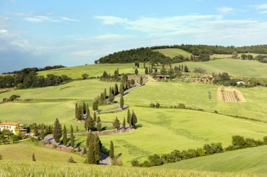 Rolling hills and winding roads in Tuscany