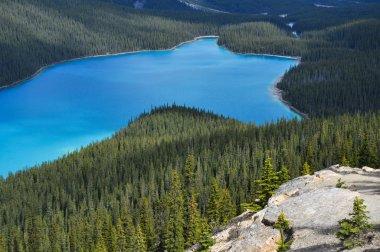 Peyto lake, Rocky Mountains (Canada)