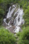 Černý bobří vodopády