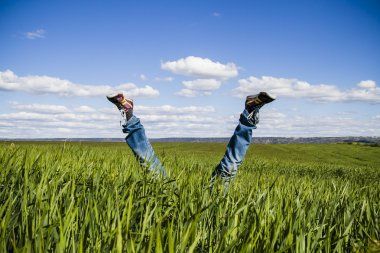 concept of freedom and joy, man with jeans lying in wheat field