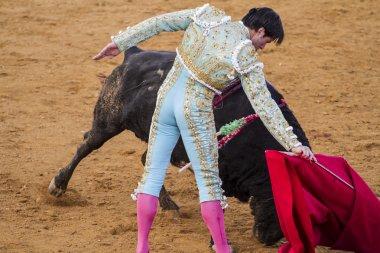 Jose Antonio Canales Rivera, Spanish bullfighter.