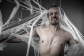 Fotografie Man tangled in spider web