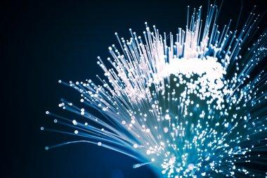 Fiber optics close-up